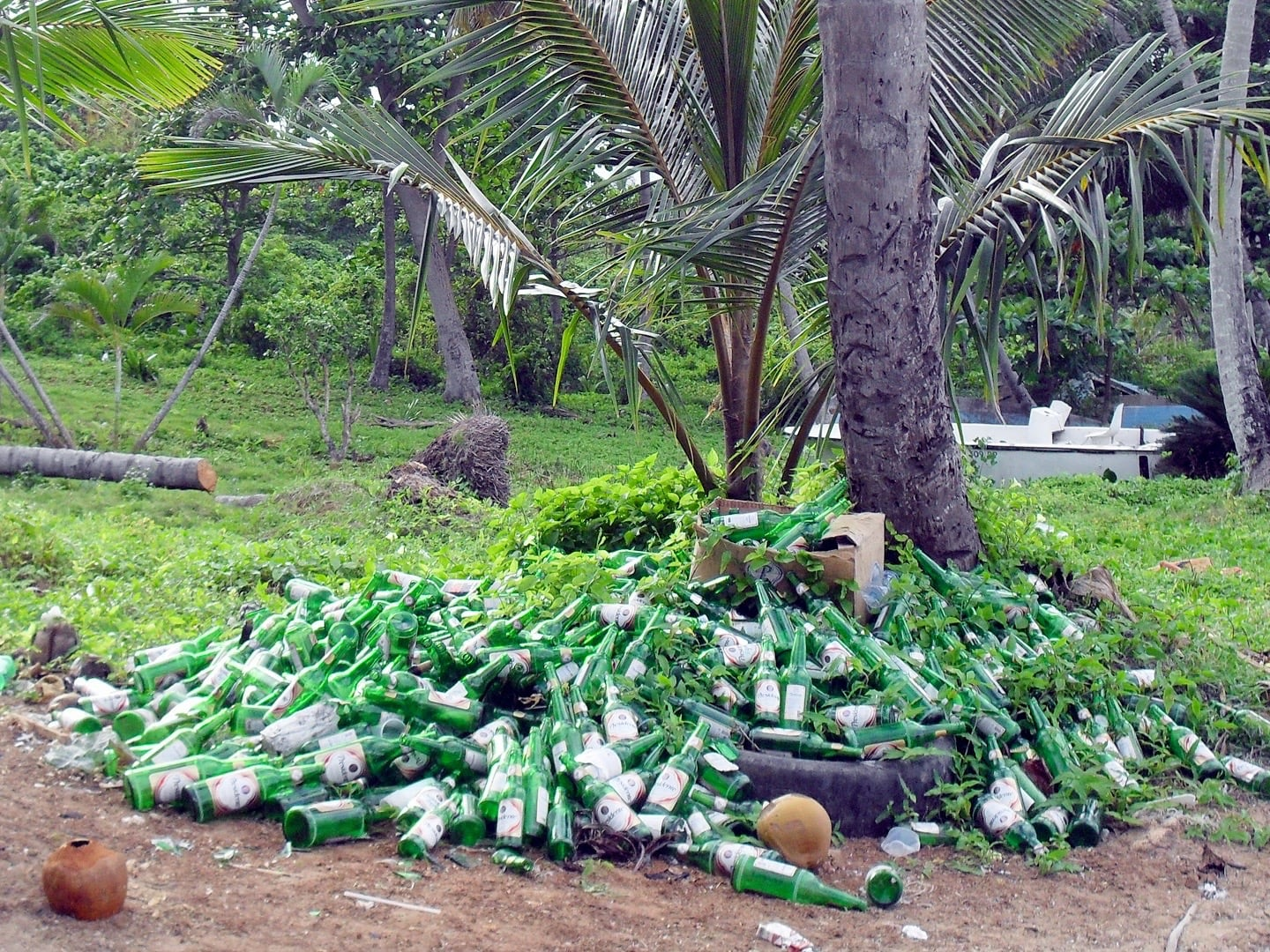 pile of empty beer bottles