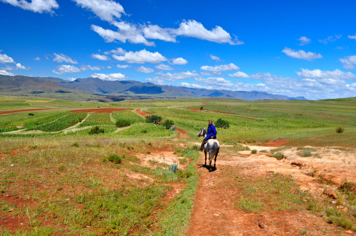 pony trekking Lesotho green rolling hills and blue sky