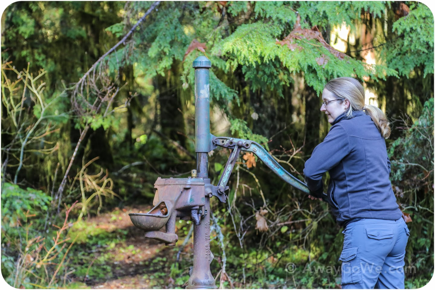 interrorem cabin olympic national park water hand pump