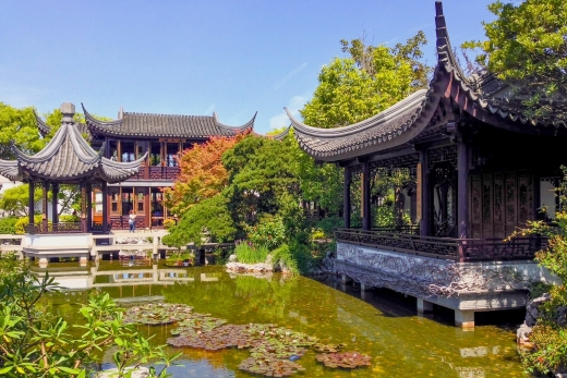One Year of Portland's Lan Su Chinese Garden