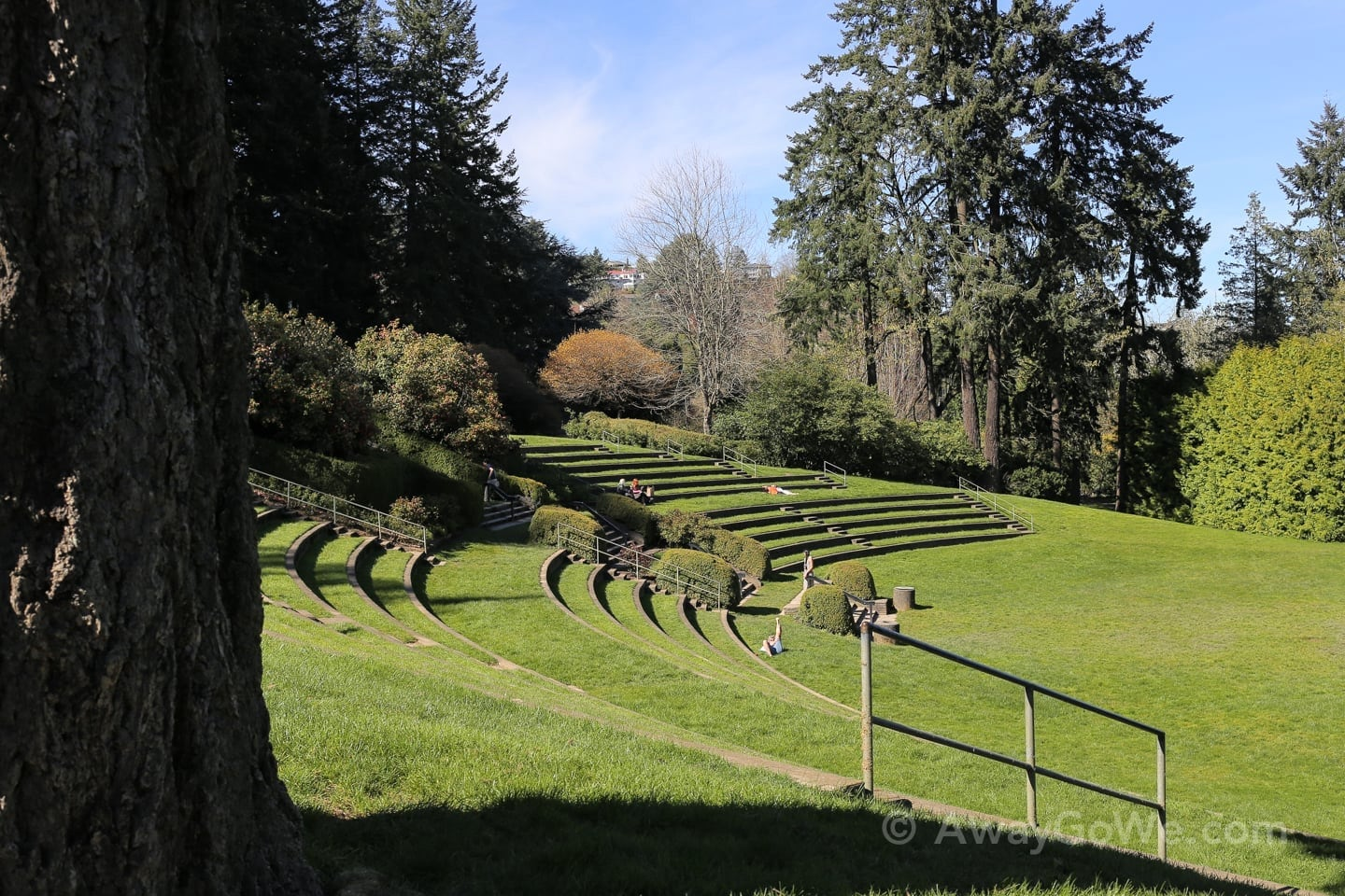 Washington Park Amphitheater Portland Oregon
