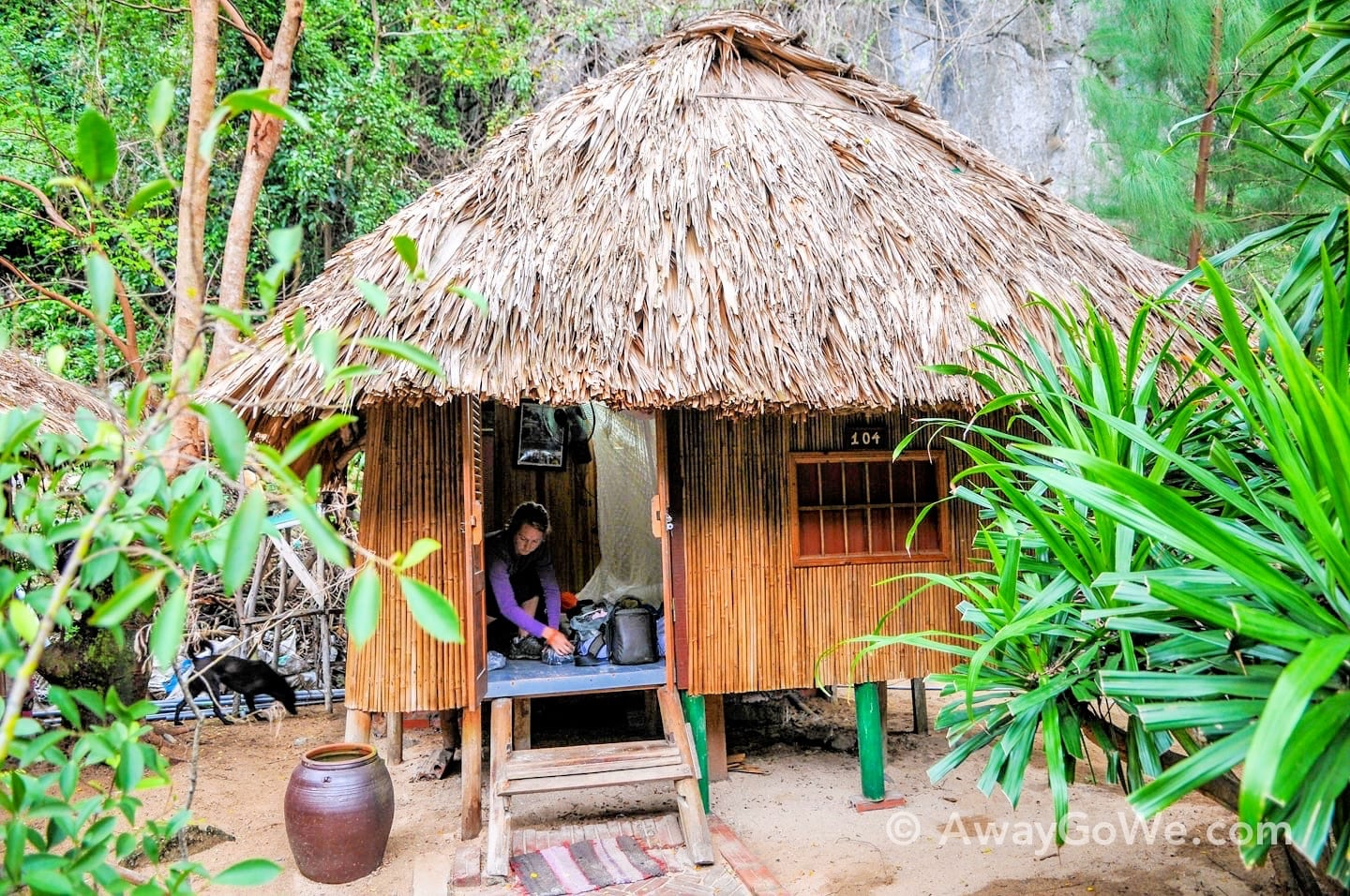 Stilted thatch-roof bungalow surrounded by jungle
