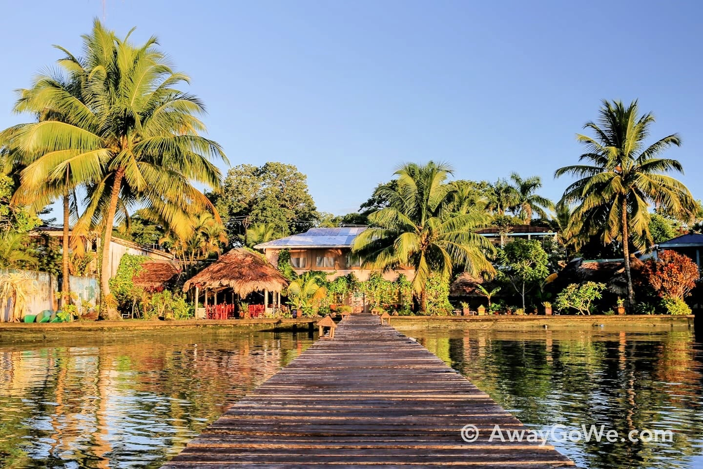 dock on water with palm trees