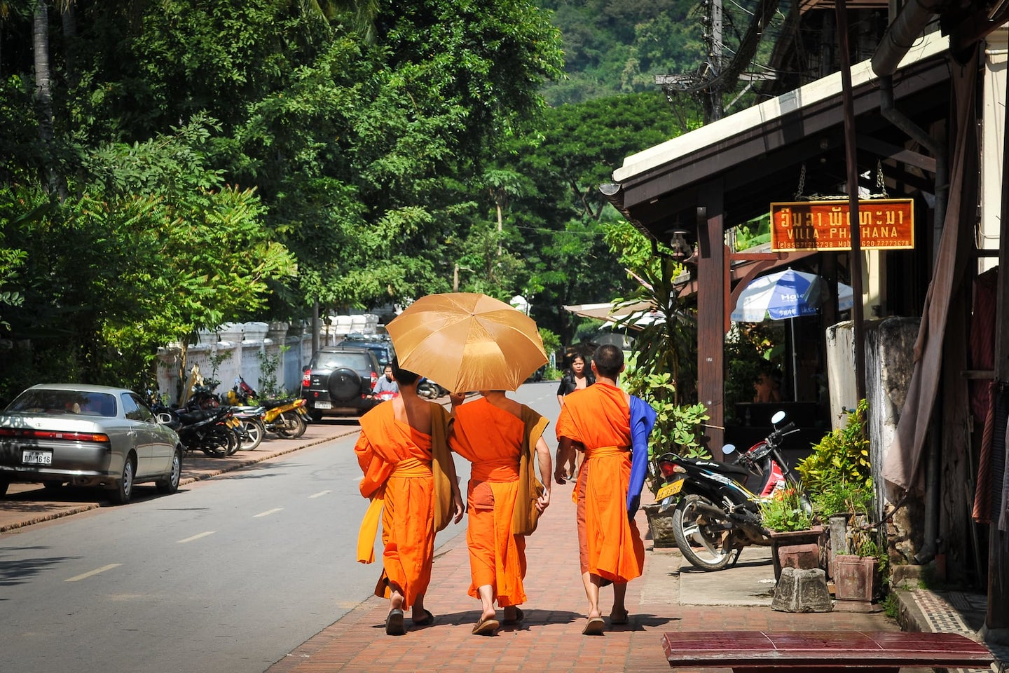 saffron-clad monks walking down road