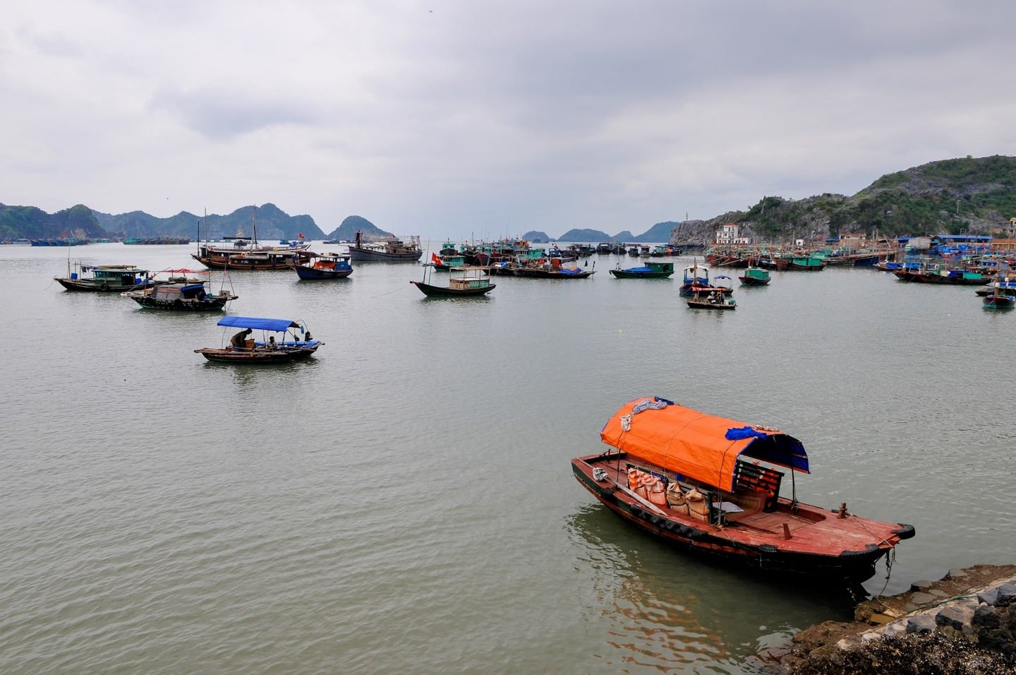 Cat Ba Town harbor vietnam