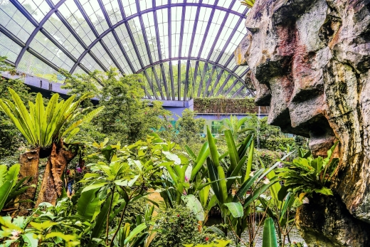 Entopia by Penang Butterfly Farm: What to Expect + Visitor Tips