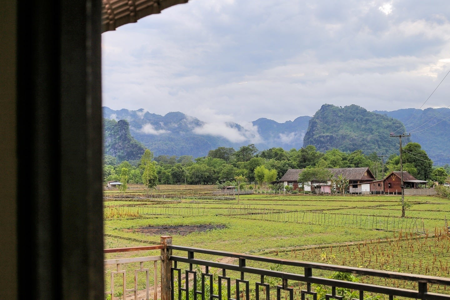 rice paddies in Ban O Laos