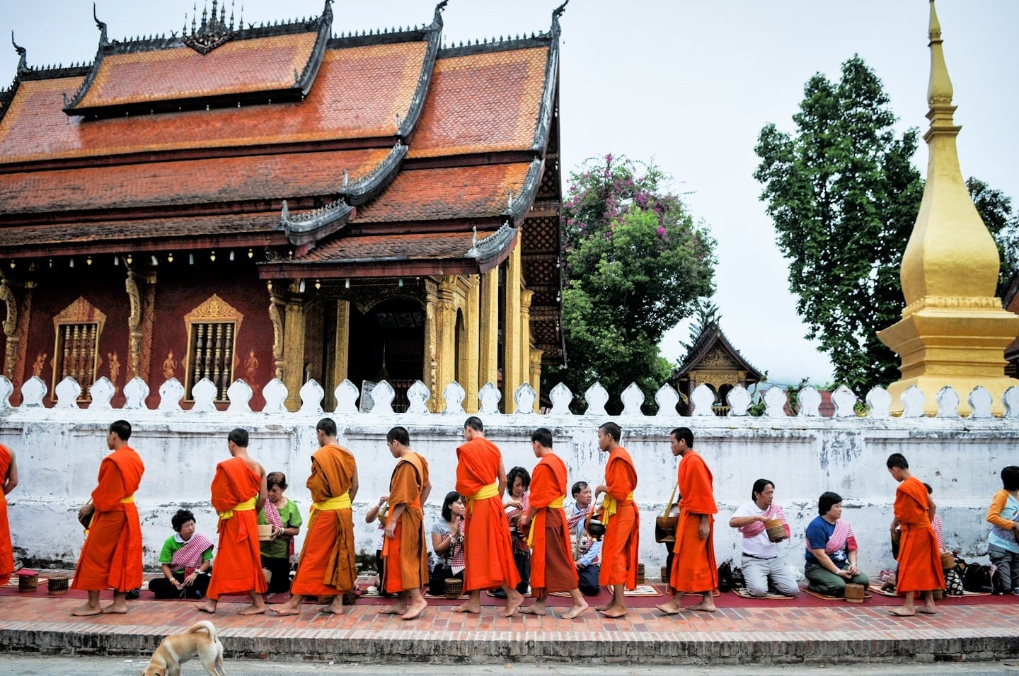 tak bat things to do in Luang Prabang Laos