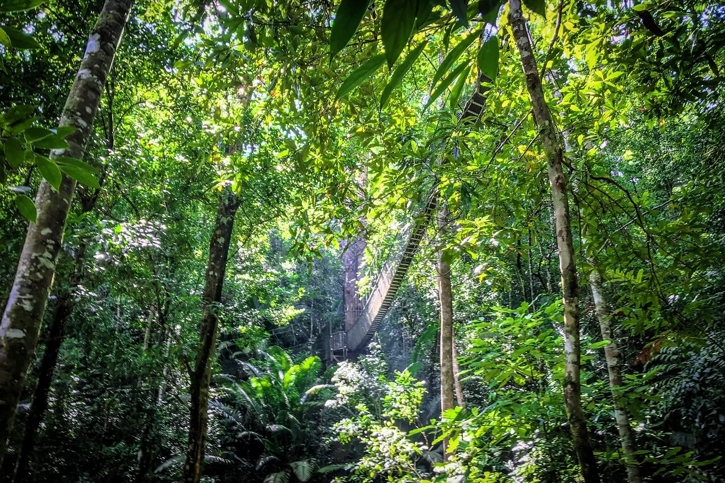 things to do in Penang National Park