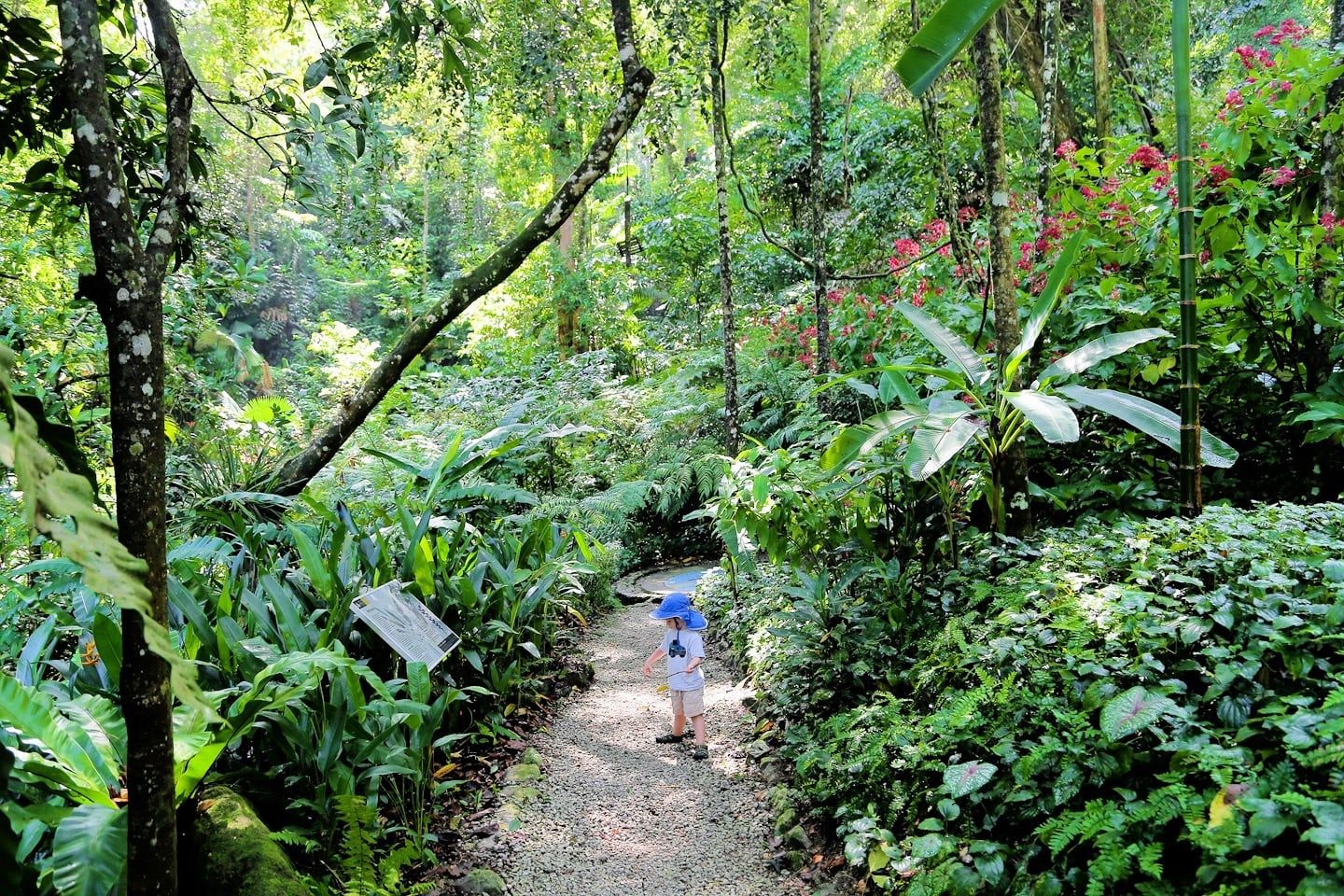 Tropical Spice Garden best things to do in Penang Malaysia